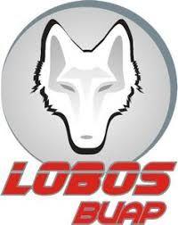 Image result for 1996 Lobos BUAP
