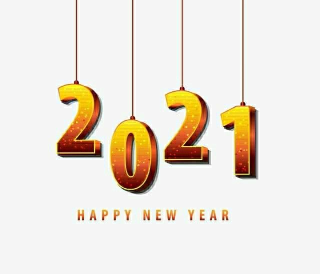 Happy New Year 2021 in 2020 | Happy new year pictures ...