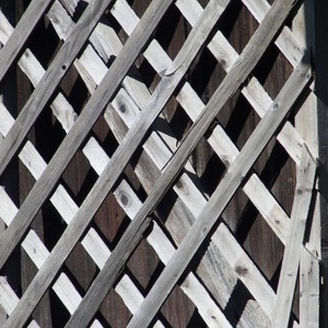 Attach Trellises to a Chain Link Fence for Privacy