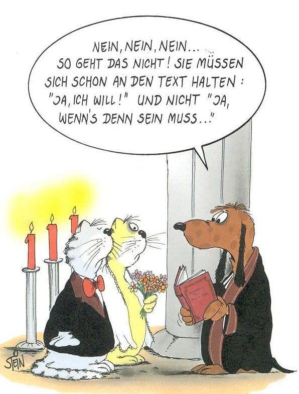 uli stein schule - Google-Suche | Hochzeit witze, Ehe ...