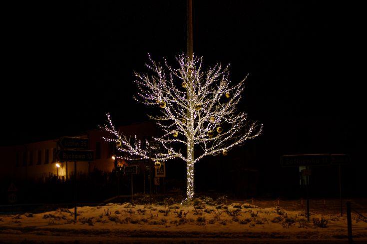 drzewko świąteczne,iluminacja bożonarodzeniowa
