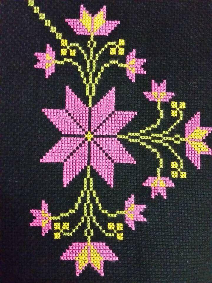 Yıldız çiçeği pembe