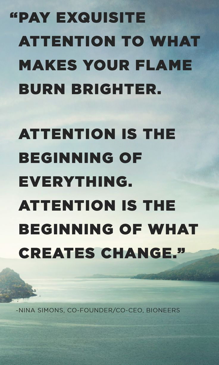 """""""Pay exquisite attention to what makes your flame burn brighter. Attention is the beginning of everything. Attention is the beginning of what creates change."""" Nina Simons, Co-Founder/Co-CEO, Bioneers (interviewed on Season 8 of Roadtrip Nation)"""