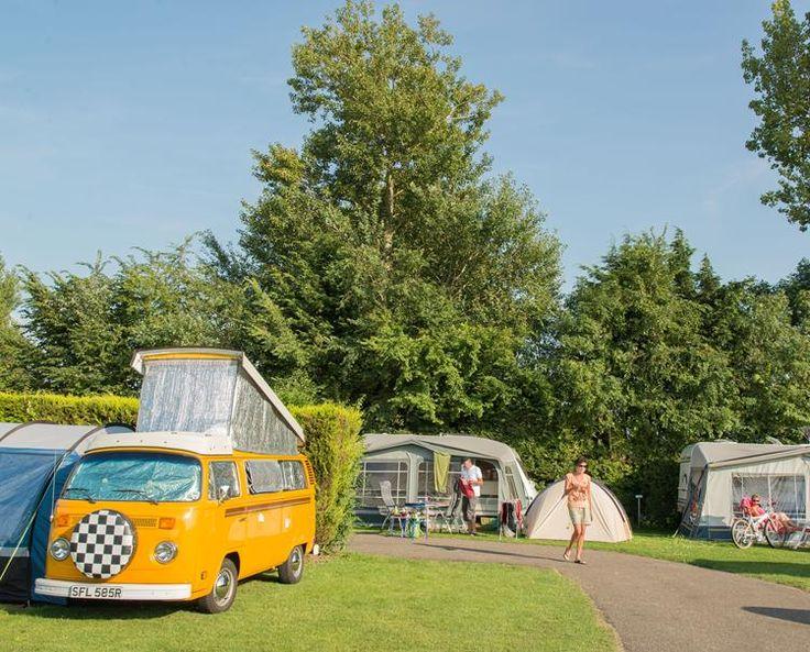 Vakantiepark Koningshof - Campsite & Holiday homes in the Netherlands