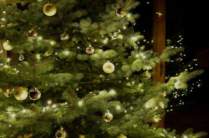 Świąteczna choinka Autor: Aleksandra Peplińska  #QSQ #Christmas #tree #ornament #inspiration #idea #decor #green #fairy #lights #silver #white #night