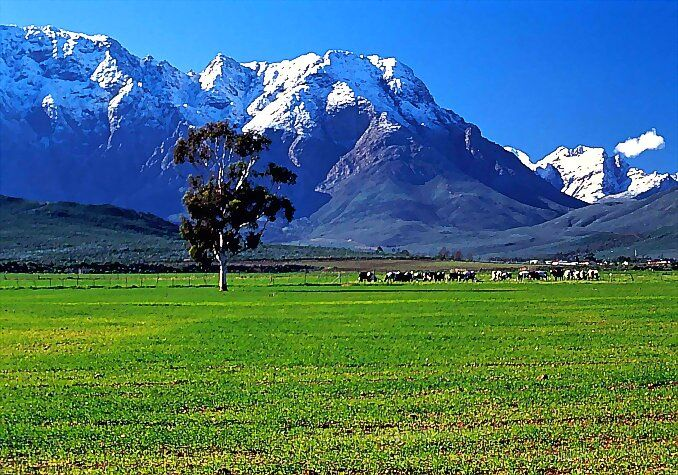 Worcester. South Africa