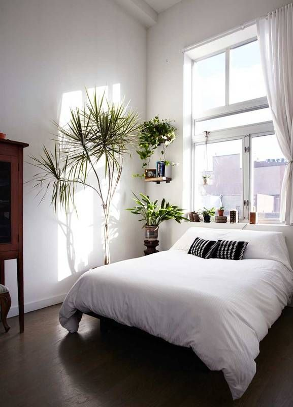 How To Make Your Sublet Feel Less Like A Sublet: Easy Tricks To Make Your Sublet Feel Like Home