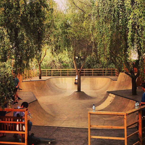 Best Backyard Ever Skatepark Bikes Skate Snow