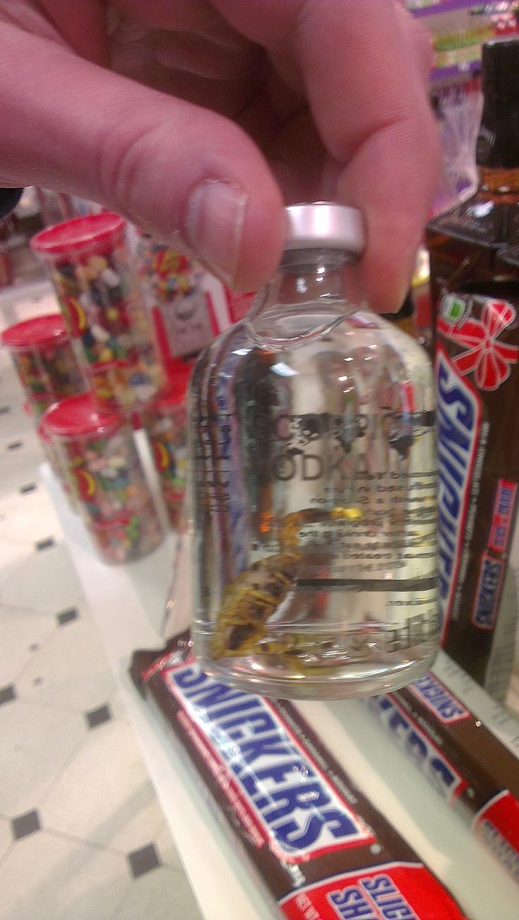 Scorpion in Vodka!