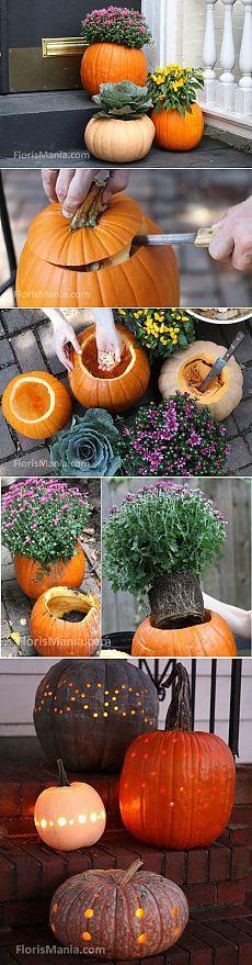 Поделки из тыквы: цветочные горшки и фонари