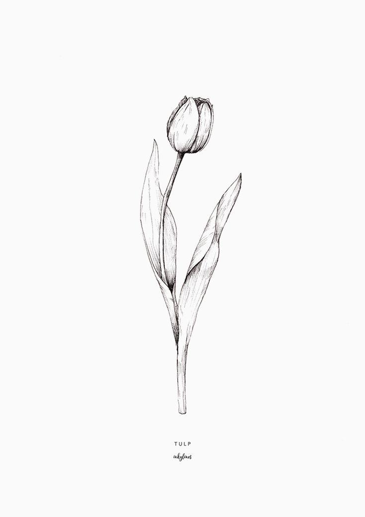 Free printable: the tulip #freebies #gratis #spring