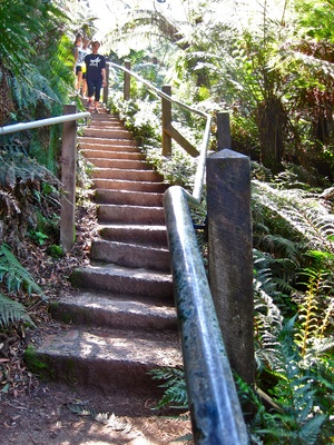 1000 Steps/Kokoda Memorial Trail Upgrade  Why? Because 1000 Steps just isn't enough  When: 7 days a week  Where: Starts at Fern Tree Gully Picnic Ground  Cost: Free (just blood, sweat and tears)