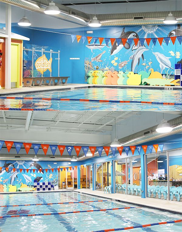 Everything you need to know about infant swim lessons from Goldfish Swim School!
