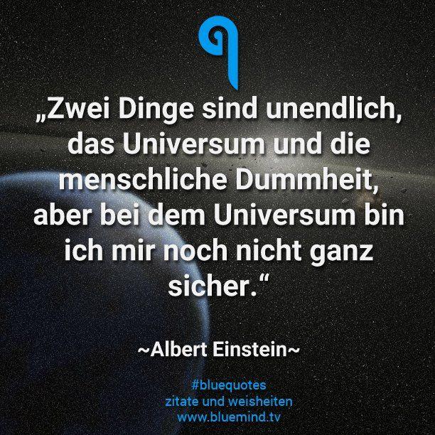 11 Kluge Spruche Von Albert Einstein Bluemind Tv Spruche Von Albert Einstein Einstein Zitate Spruche