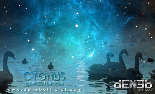 Costellazione del Cigno: Casa – Cygnus Constellation: Home
