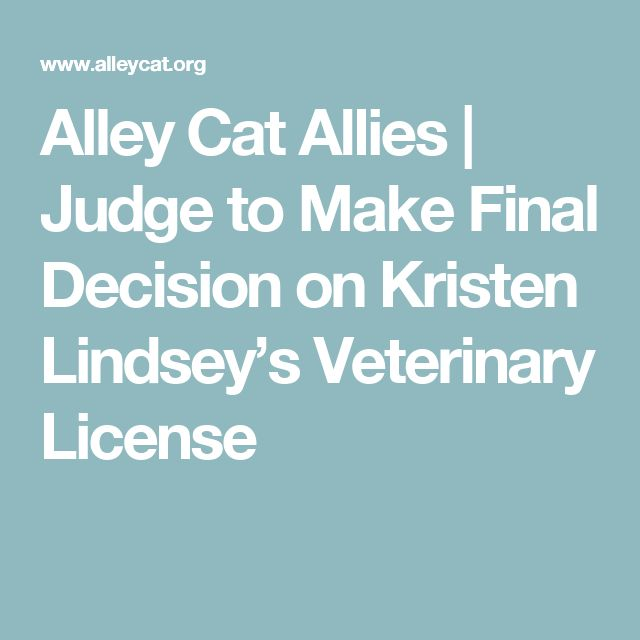 Alley Cat Allies   Judge to Make Final Decision on Kristen Lindsey's Veterinary License