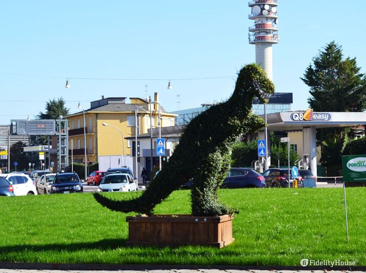 Dinosauri: i Giganti dall'Argentina sono in mostra, ma quelli veri si possono ammirare in Via Altinate, nel Centro San Gaetano a Padova.