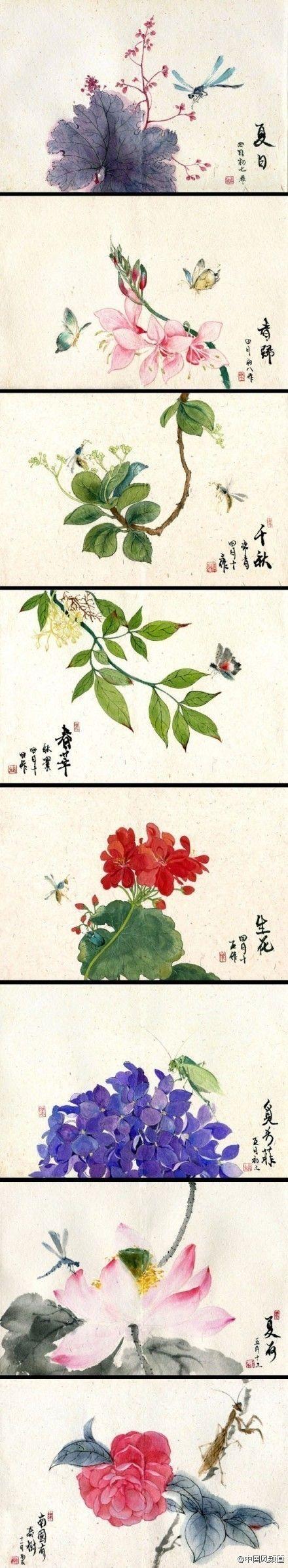 【中国风手绘】绛衣披拂露盈盈,淡染胭脂一朵轻。