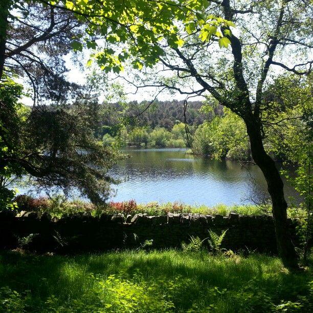 Garden Landscaping In Halifax Huddersfield West: Beautiful Places, Halifax, Landscape