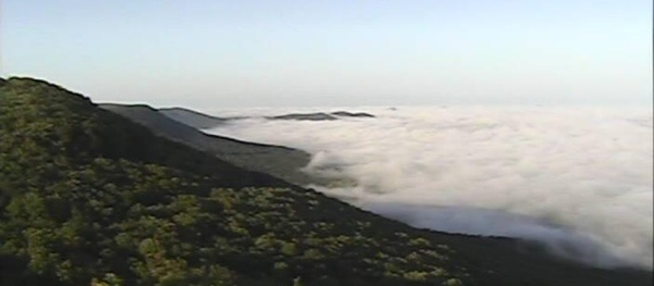 Sunrise fog over Mt. Cheaha, the highest point of altitude in Alabama.: Places Points, Highest Points, Natural Photography, Favorite Places, Sunrises Fog, Art Design, Rest Places, Hlg Art, Finals Rest