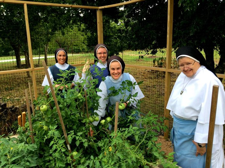 exploring the dominican sisters essay The dominican sisters of mary, mother of the eucharist established their  community more than 20 years ago in ann arbor, mich where music is.
