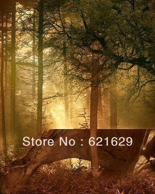 Лесной пейзаж 8'x12 'СР Компьютерная роспись Scenic Фотография Фон Фотостудия Фон DGX-446