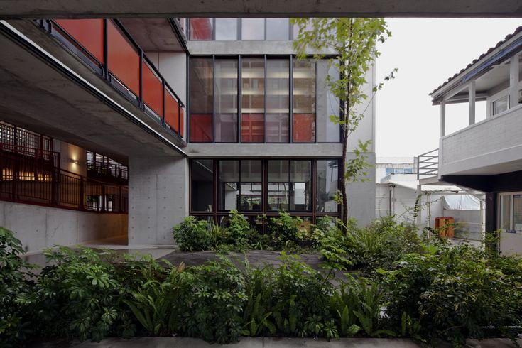 Gallery of Primaria Nuevo Continente / Miguel Montor - 20
