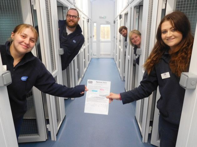 Staff And Volunteers At The Rspca Brent Knoll Animal Centre North Somerset Cat Nap Cattery