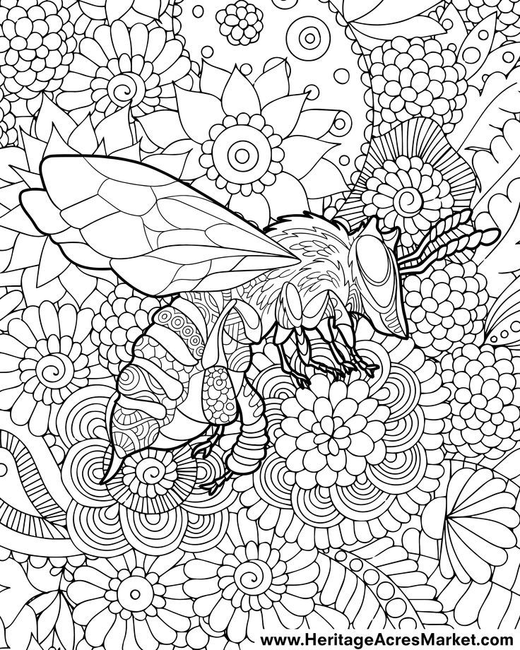 Friendly Bee Coloring Page Heritage Acres Market Llc Bee Coloring Pages Free Coloring Pages Coloring Pages