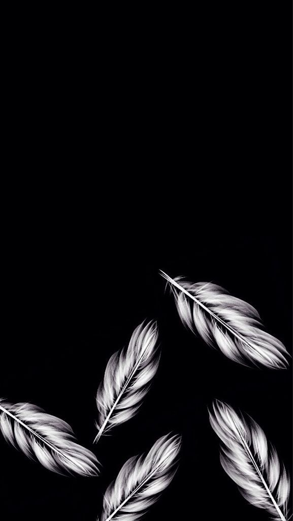 Feathers~ phone background