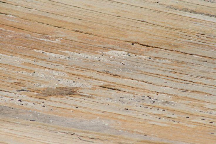 L1M1AP3 Take 3  Sandstone rocks at Cape Solanda, Botany Bay ISO 200 f/11 1/500 300mm Taken on my Canon 400D