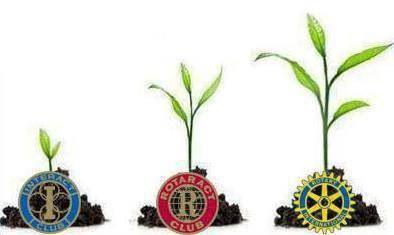 #growthintorotary