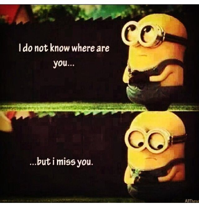 Funny Memes For Missing Someone : Best quotes memes missing you images on pinterest
