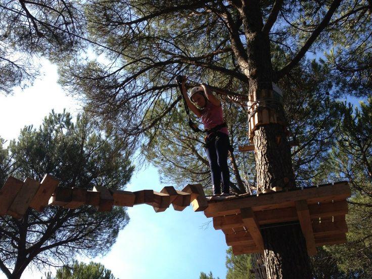 Percorso verde, ponte di tronchi girevoli!