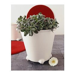 IKEA - IKEA PS FEJÖ, 自動水やり機能付き植木鉢, , 定期的に水やりができなくても植物を枯らしません自動給水機能付き。コンスタントに水分を補給しますキャスター付きなので移動が簡単。掃除のときなどに便利です