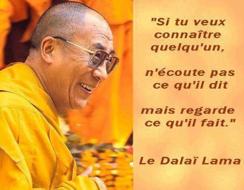 Citations option bonheur: Panneaux de citations zen de grands sages : Gandhi, Bouddha, Dalaï Lama