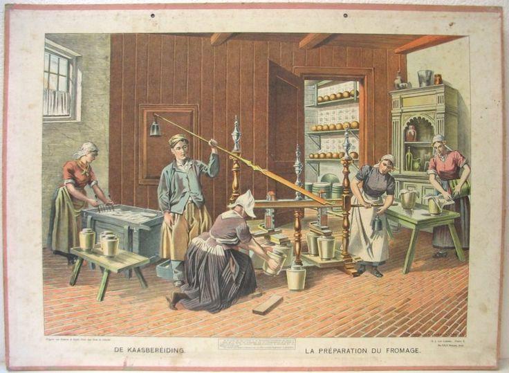 Kaas maken- (Scheepstra en Walstra)