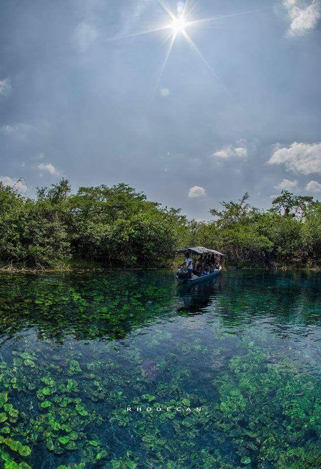 Cráter Azul Sayajche, Peten  un nacimiento de agua del arroyo San Teodoro, ya que a pesar de dar la impresión de ser un cráter, solamente mide cinco metros de profundidad.   Foto:  Rhode Can