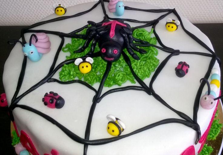 Tort pająk, żuczki