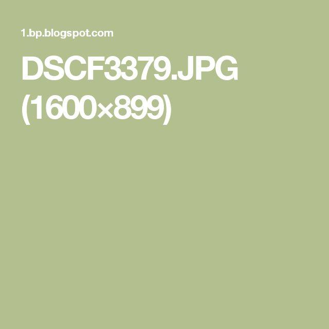 DSCF3379.JPG (1600×899)