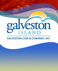 Visit Galveston (maybe see the sea turtles)