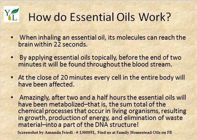 How do essential oils work? You can order direct at retail or wholesale  no pressure or obligation www.youngliving.com/signup/?sponsorid=1462769&enrollerid=1462769