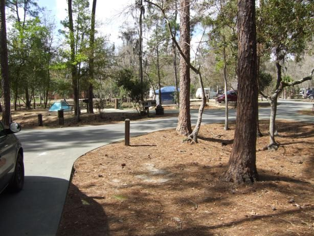 The Cabins at Disney's Fort Wilderness Resort: A Disney ...