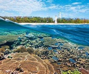 Ecotourism: Seeking sanctuary   Qantas Travel Insider