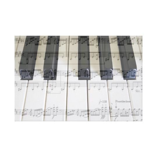 Piano & Moonlight Sonata - 3rd Movement Canvas Print by www.zazzle.com/htgraphicdesigner* #zazzle #gift #giftidea #keyboard #classical #music #art #canvas #print #moonlight
