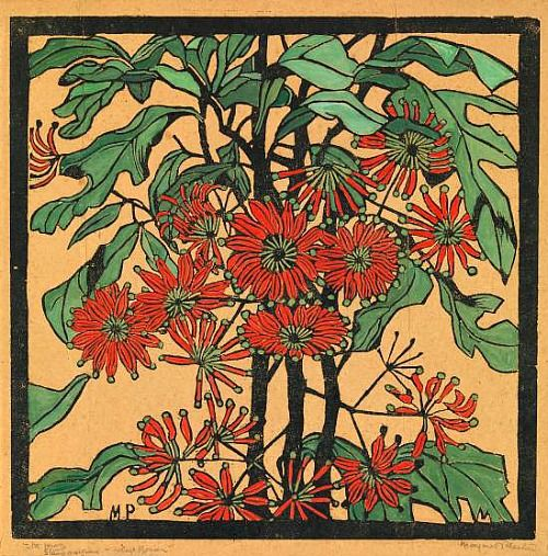 Margaret Preston  Stenocarpus, Wheel Flower  1929