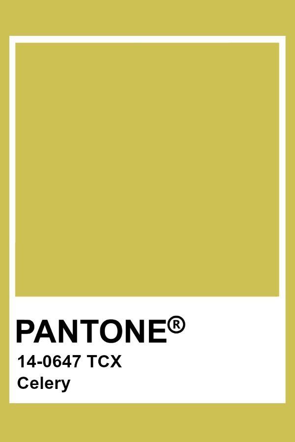 Pantone Celery | Pantone colour palettes, Yellow pantone, Pantone color