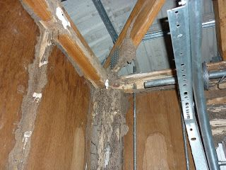 TermitesRus in Brisbane is one such company which can offer assistance for #TermitePestControl in #Brisbane. For more detail call us now at 0403822621