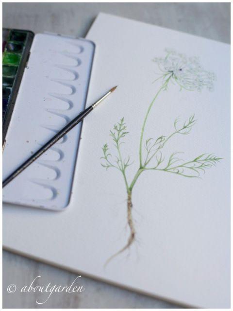 botanic watercolor