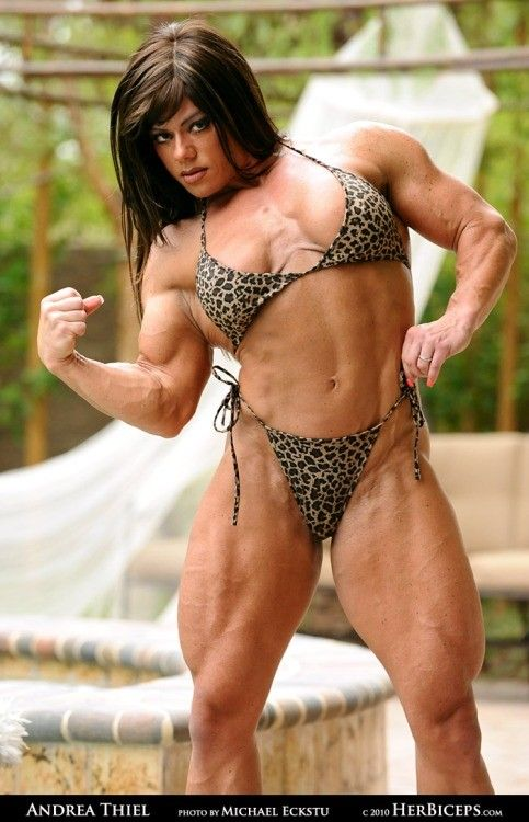 Pin de M. Fields en Andrea Thiel | Stomach muscles, Abs ...